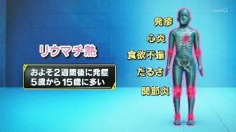 リウマチ熱の病気